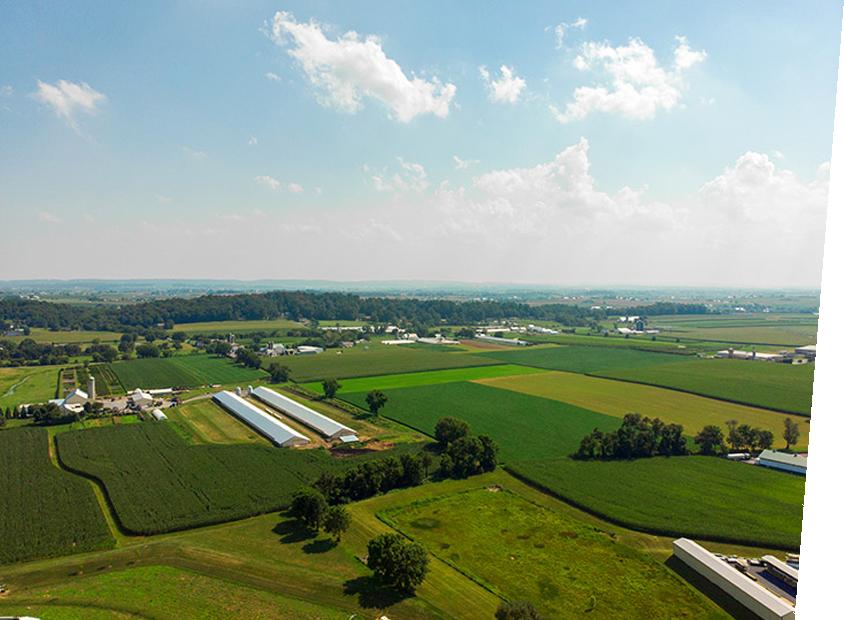 Farmland Angle