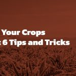 Protecting crops